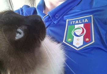 My Pet Cheer for Italy (12 giu 2014)